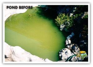Green water control